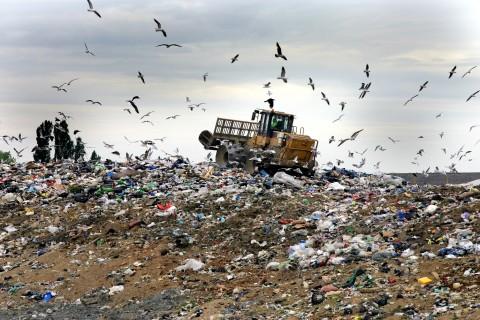 2_waste-1-epr1-landfill11
