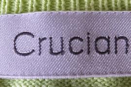 crucianitop