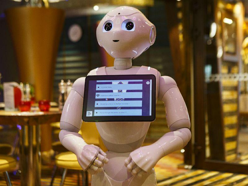 Social Robot Paolo Pepper